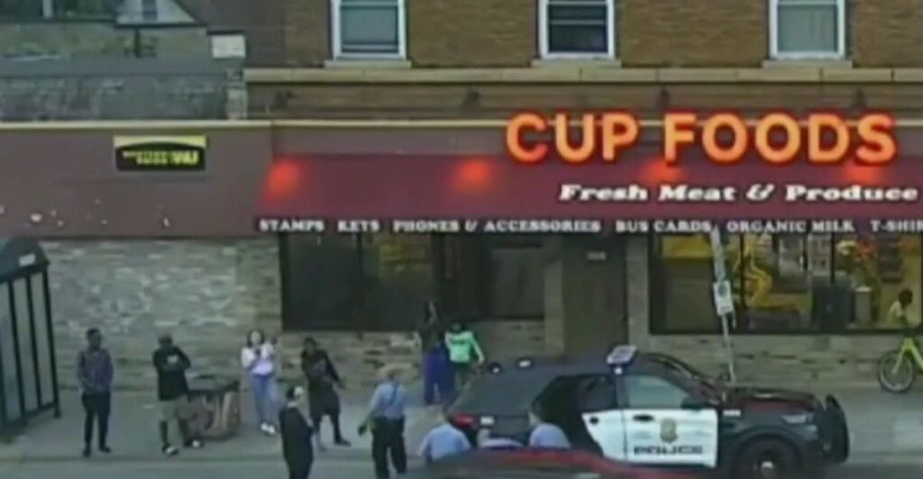 "The ""angry mob"" of ""bystanders"" who witnessed Minneapolis police officer Derek Chauvin murder George Floyd"