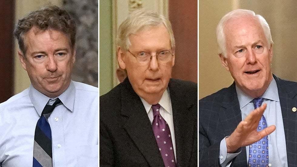 GOP sounds alarm bell over coronavirus-fueled debt 3